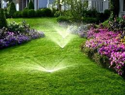 Lush green lawn bordered with purple and pink flowers with irrigation sprinklers using a cross connection device to stop contamination in the water system.